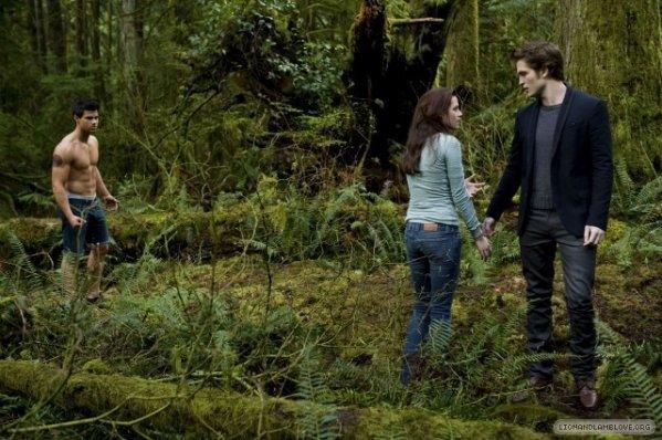Jacob, Bella et Edward (New Moon)