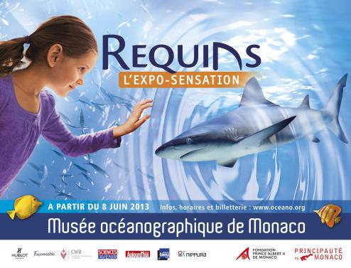 une expo pour requin et les aimé