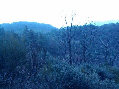 1er Janvier 2011 à Caunes minervois