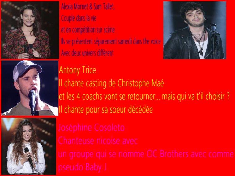 SPOILERS Découvrez 7 talents de the voice 9
