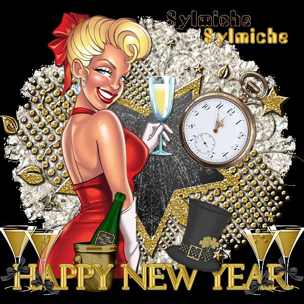 &&&&&&&&   Bonne et heureuse année 2011  a toute et a tous &&&&&&&&&&&