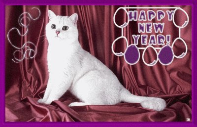 Je vous présente mes meilleurs voeux pour la nouvelle année qui s'approche à grand pas.