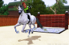 Equitation-passion-sims