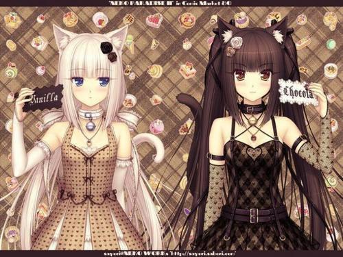 Chocolat et Vanilla