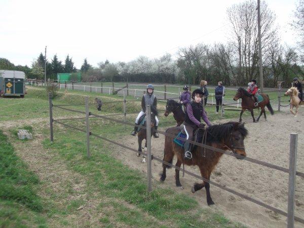 Les pouns et leur cavaliers