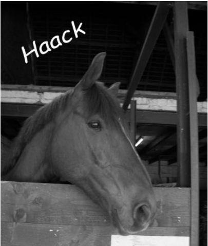 Un petit Bonjour de Mr. Hack