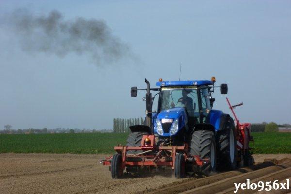 Plantation pommes de terre