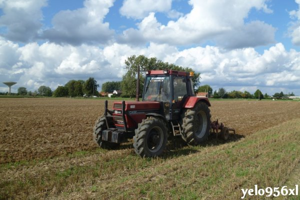 Case IH 956xl + extirpateur Steeno