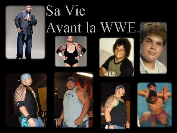 Avant la WWE.