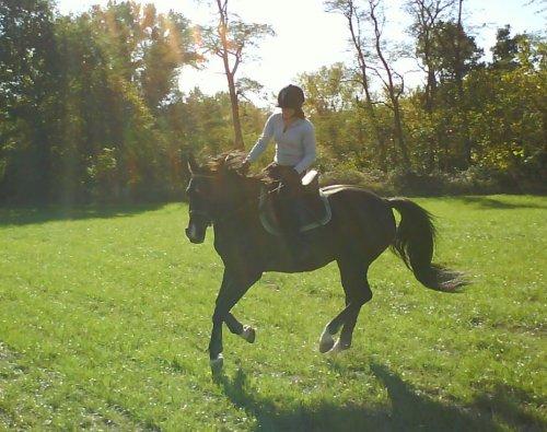 Des photos de ma soeur a cheval (ce week)
