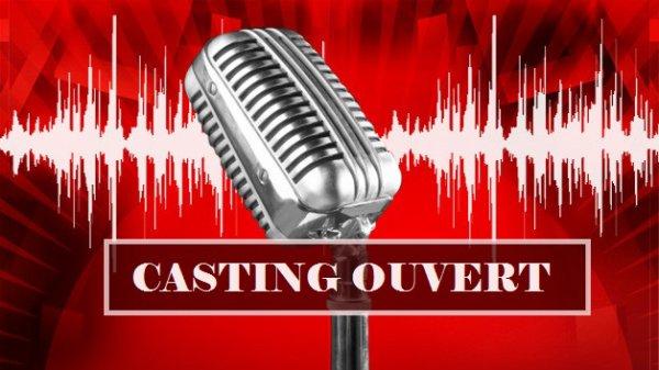 The Voice : Le casting de The Voice 3 est ouvert