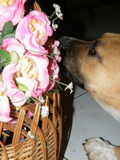 Un soir du 14 Février, coïncidence que ce soit la Saint Valentin ? Noooon ! C'est elle ma Valentine de la soirée :P ♥