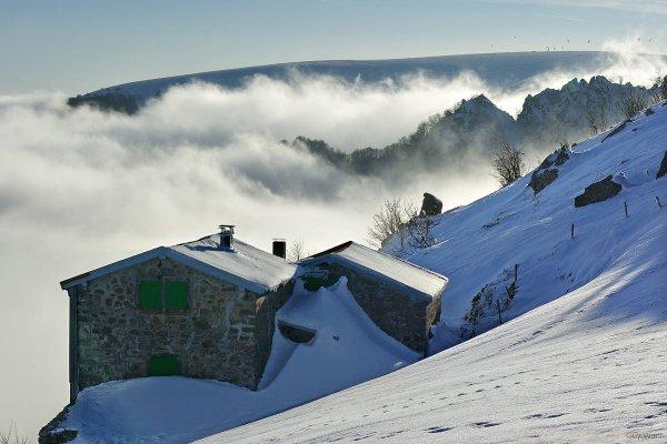 secteur du Hohneck ( Vosges )