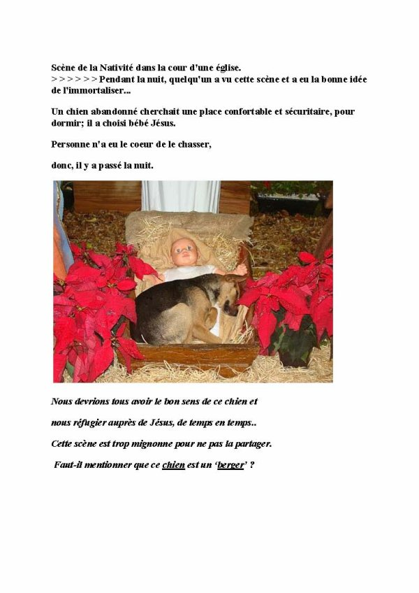 'Berger' dans la crèche de Noël