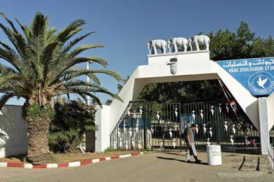 ALGER Zoo à Ben aknoun