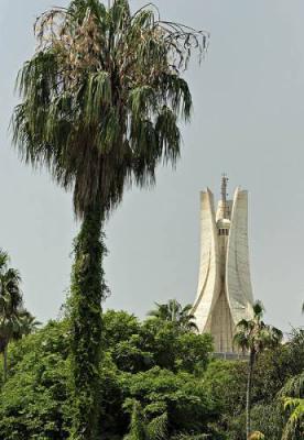 ALGER Jardin d'essais du Hamma avec vue sur Riad El Feth