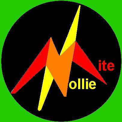 Nollie-Mite Team