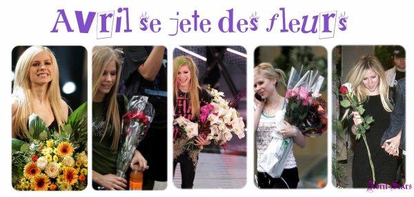 Avril se jete des fleursNewsletter