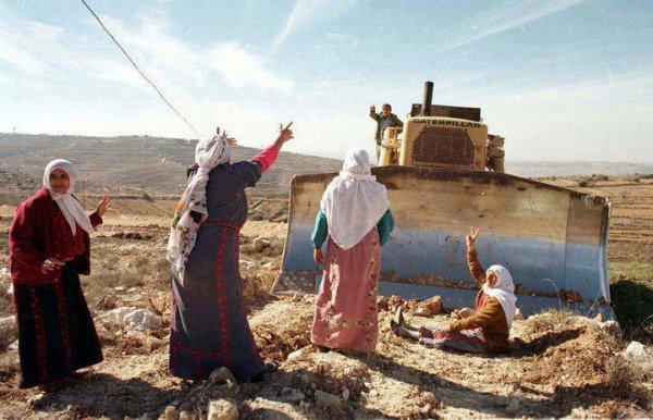فلسطينية المنديل