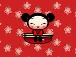 pucca