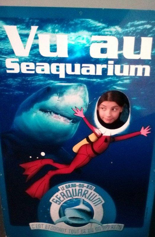 super journée seaquarium