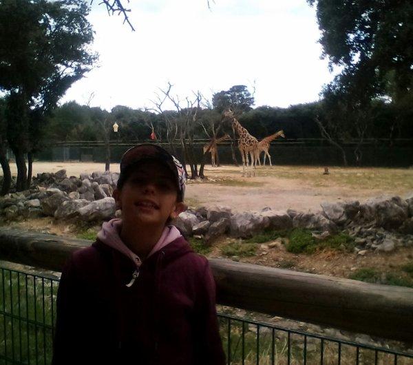 La journée au zoo de Montpellier