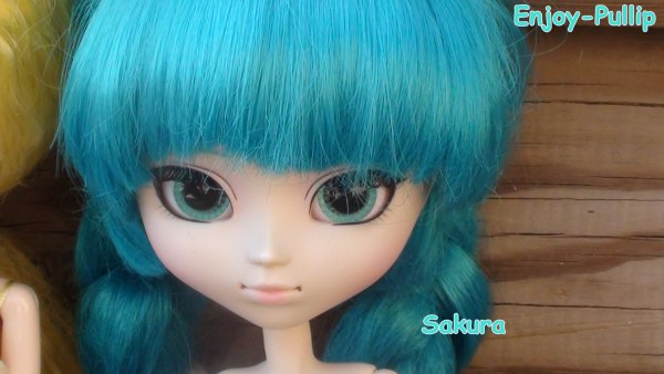 Photo avec 44pullip (Partie 2)