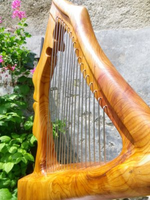 Harpe au féminin