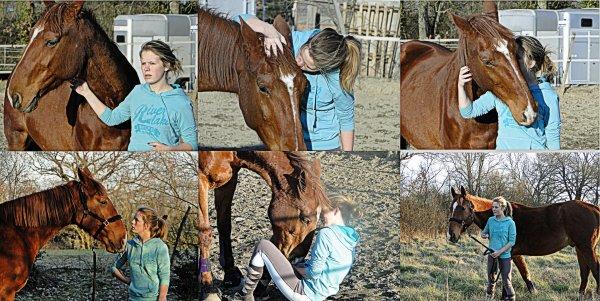 """"""" On ne peut pretendre maitriser un cheval tant qu'on ne se maitrise pas soi même """""""