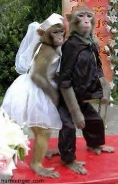 jolie mariage