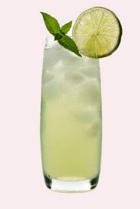Gin Fizz ~ Avec Alcool