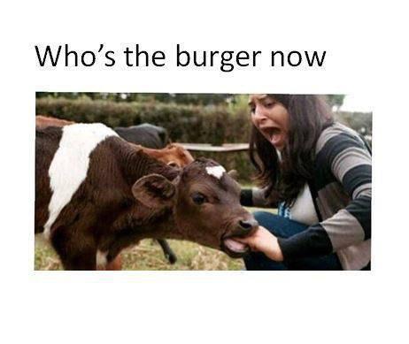lol 8-p burger time