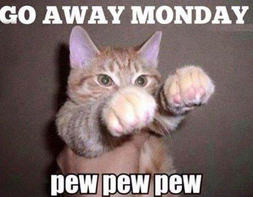 go away MONDAY