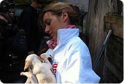60 chiens saisis et confiés à la Fondation