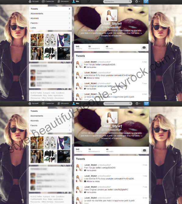 Page Twitter du blog . → @StyleBeautifulP