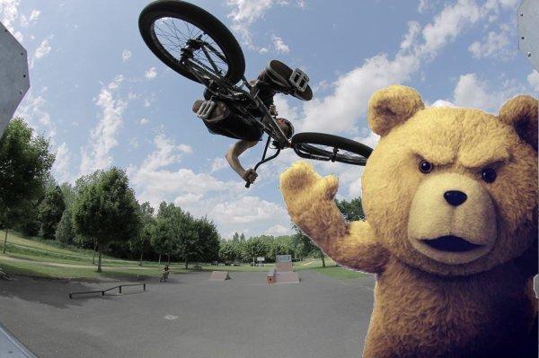 TED&Teddy