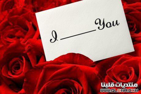 Un cadeau de moi à vous, je vous aime et je respecte vos sentiments