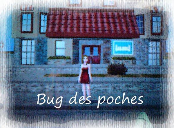 Bug des Poches
