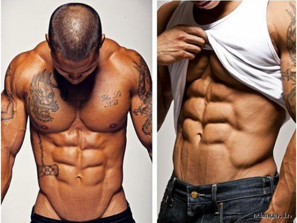 Mass Cut Pro : Build up your Lean Muscle Mass