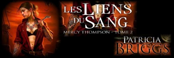 Mercy Thompson, tome 2