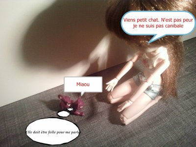 Photo story n°2 : Loona & son chat