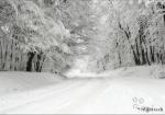 Pack fonds d'écrans : Montagnes, hiver..
