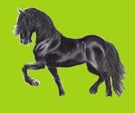 un cheval au galop dans sont près