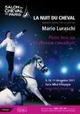 Affiche salon du cheval 2013