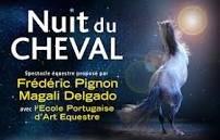 Voilà l'affiche de la nuit du cheval 2013