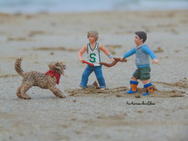 Shooting du 26-10 : à la plage ~