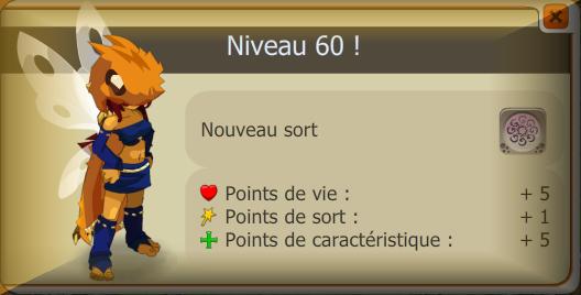 Niveau 60