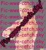 fic-wwe-catch