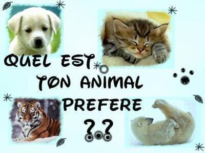 quel est ton animal préférer???