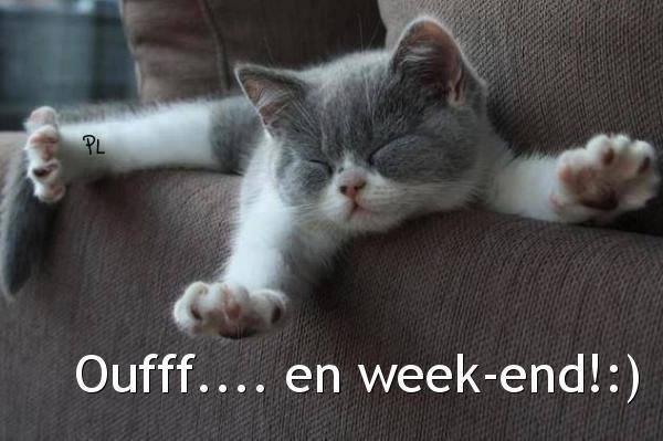 bon week-end a tous et à toutes    !!!